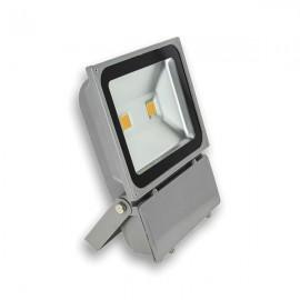 Фитопрожектор LED 100W BIOLED