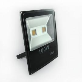 Прожектор светодиодный POWERLUX COB 100W 220V 2700K IP66