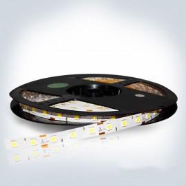 Светодиодная лента 12V 5050 60led/m 14,4W IP65 RGB TM POWERLUX