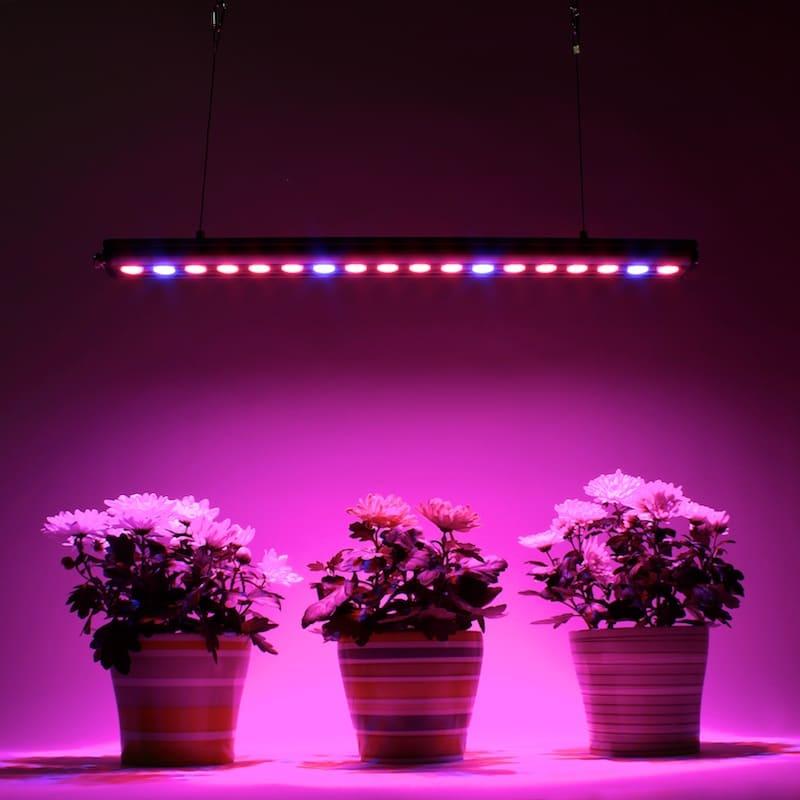 """Картинки по запросу """"фитопрожекторы для комнатных растений"""""""
